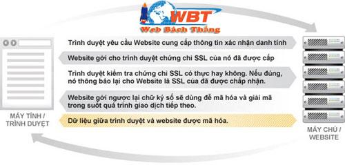 SSL tương tác thế nào