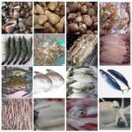Thiết kế website giá rẻ bán hải sản chuẩn seo